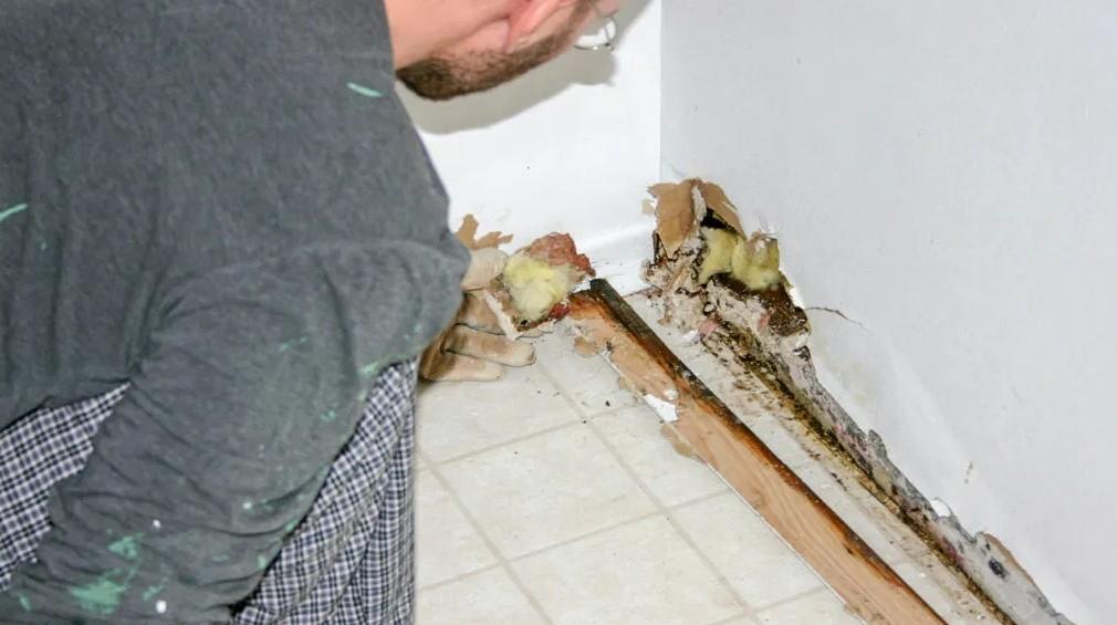 Η αιτία της μούχλας στο σπίτι μπορεί να είναι τα χαλασμένα υδραυλικά